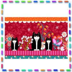 Bordure coton  Petits chats
