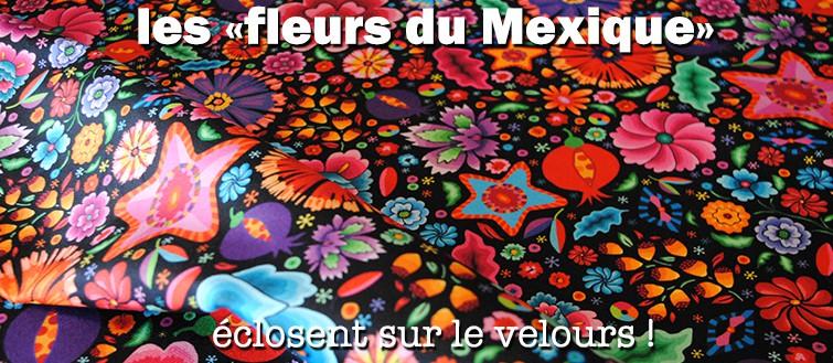 fleurs du mexique